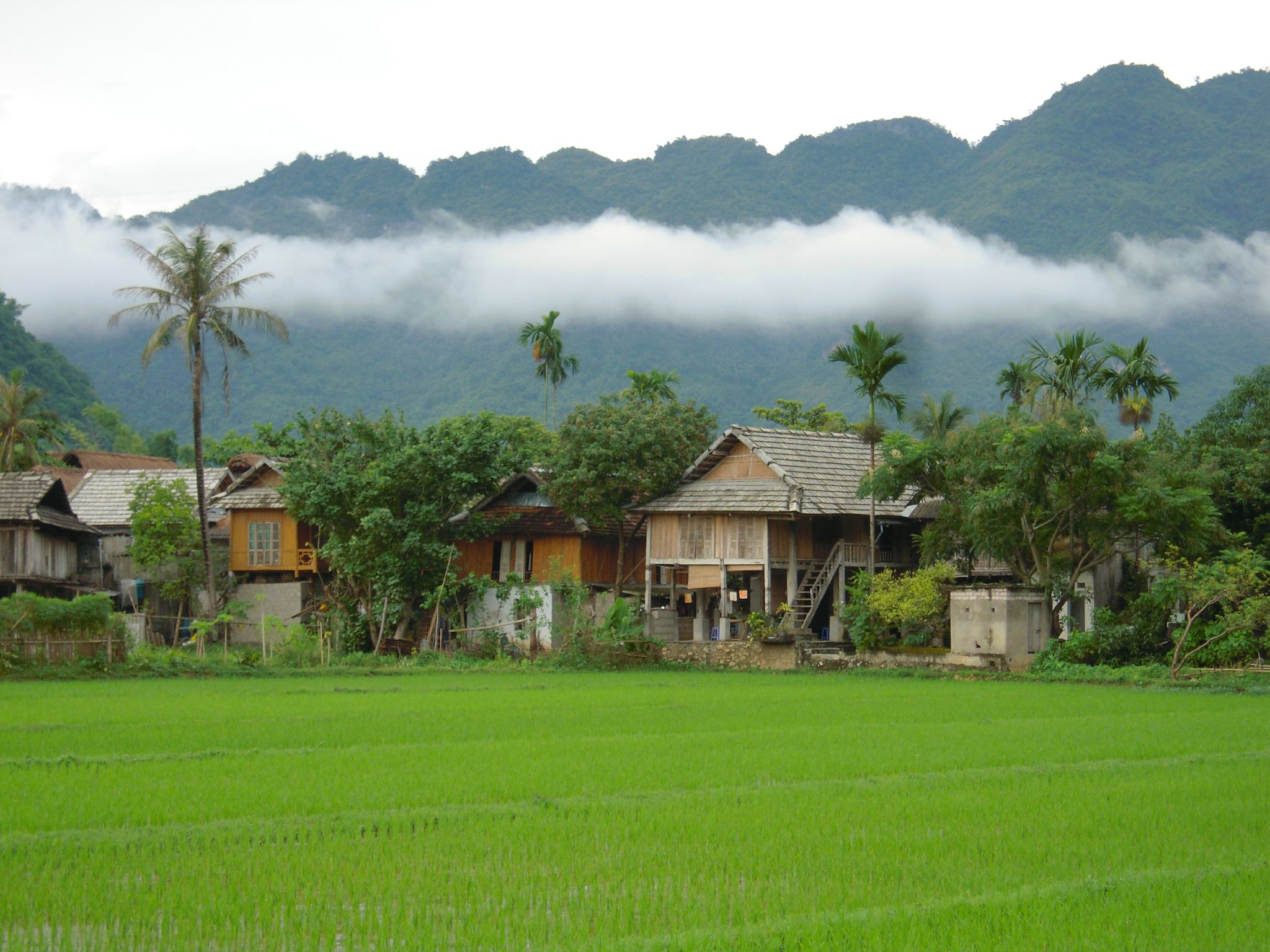 2 Days Trip Mai Chau Valley Retreat  (Standard – Classic tour)