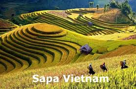 2 Days 1 Night SaPa By Bus (Overnight in Hotel )