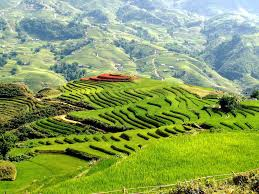 3 Day 2 Nights SaPa By Bus  Bac Ha Market  (2 Nightsin Hotel  - Depart on Friday , Saturday ) GS6